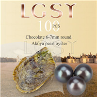 Attractive wholesale 6-7mm saltwater round Akoya Chocolate pearl oyster 100pcs