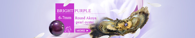 wholesale 6-7mm round Akoya bright purple pearl oyster